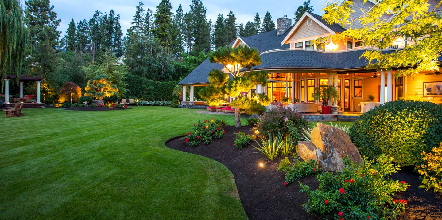 3 Common Yard Problems and How to Fix Them