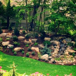 Add Spectacular Beauty To Your Landscape With Quality Evergreen Trees
