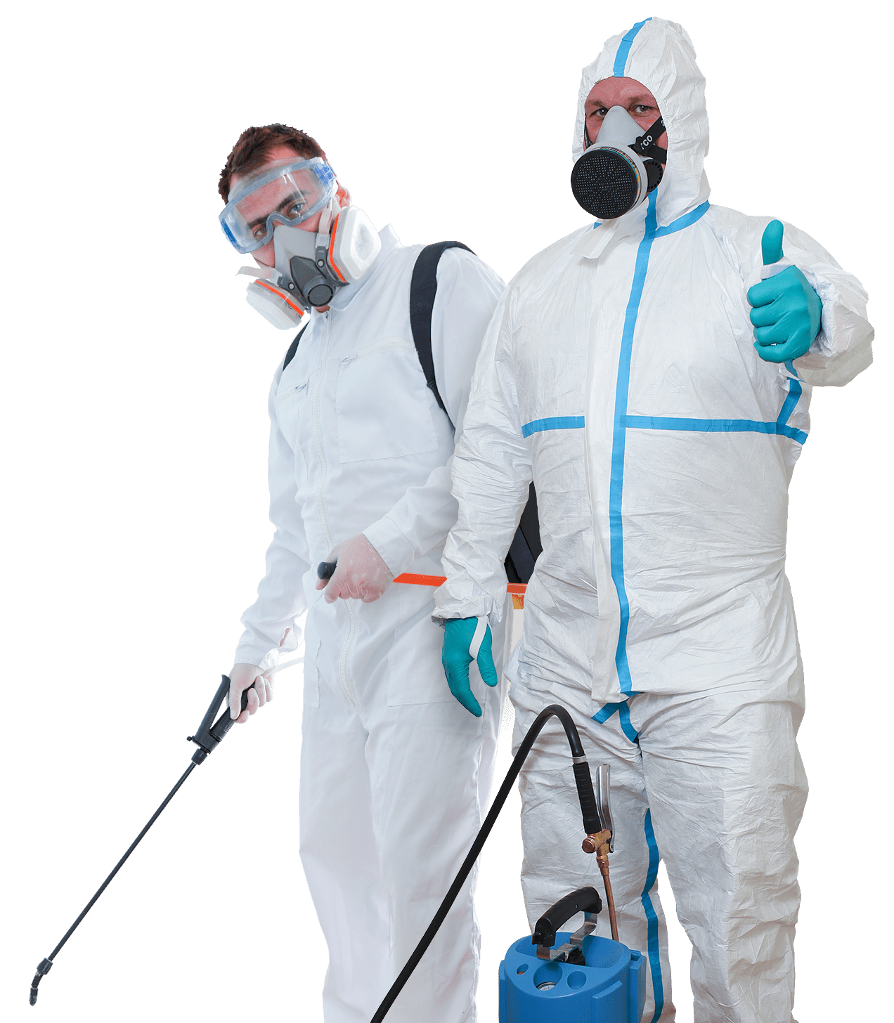 How an Ant Exterminator in Tulsa