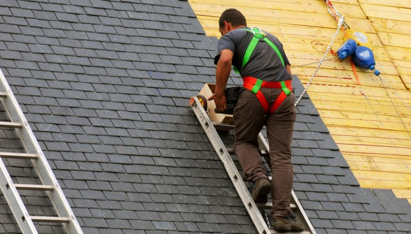 Roof Cleaning For Asphalt Shingle - no Less Than an Artist