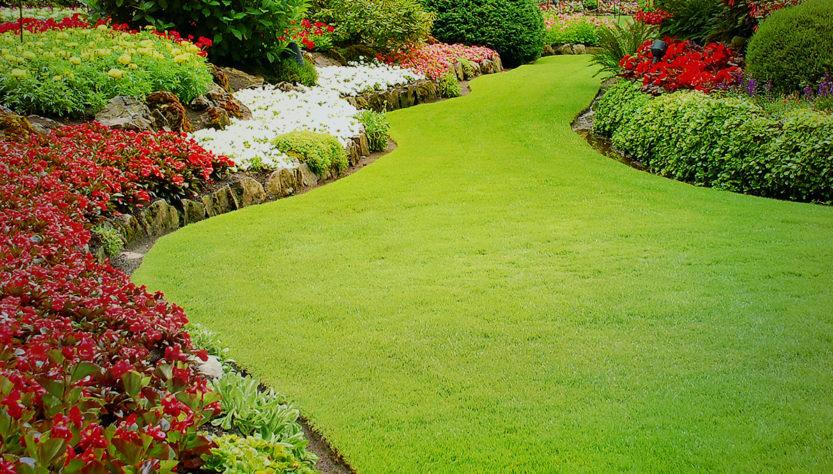 Take Landscaper Services Online